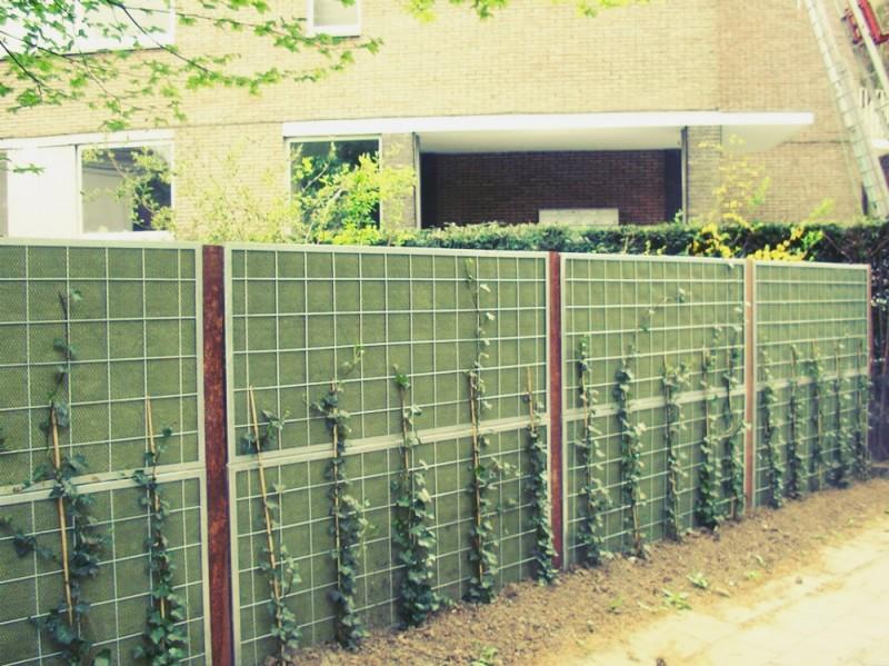 Få en flot afskærmning af haven, der holder støjen ude