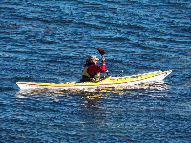At sejle havkajak er en fantastisk mulighed for at komme tættere på naturen